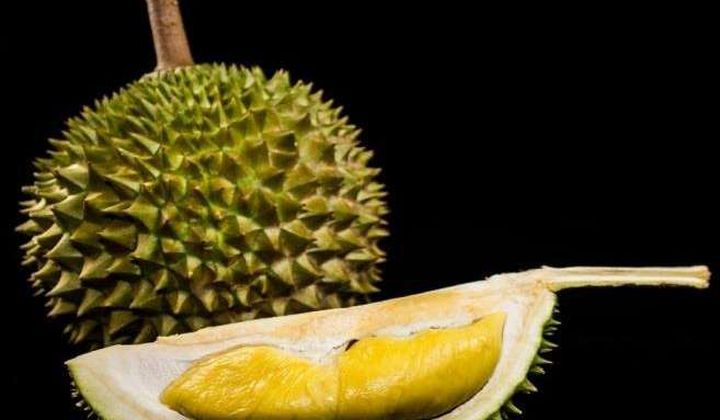 Sniffing Out the Genes Behind Durian's Stench