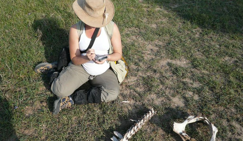 Smithsonian paleontologist Briana Pobiner looks for damage patterns on animal bones in the field.