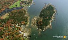The Dark History of Maine's Harbor Island