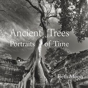 Preview thumbnail for video 'Ancient Trees: Portraits of Time