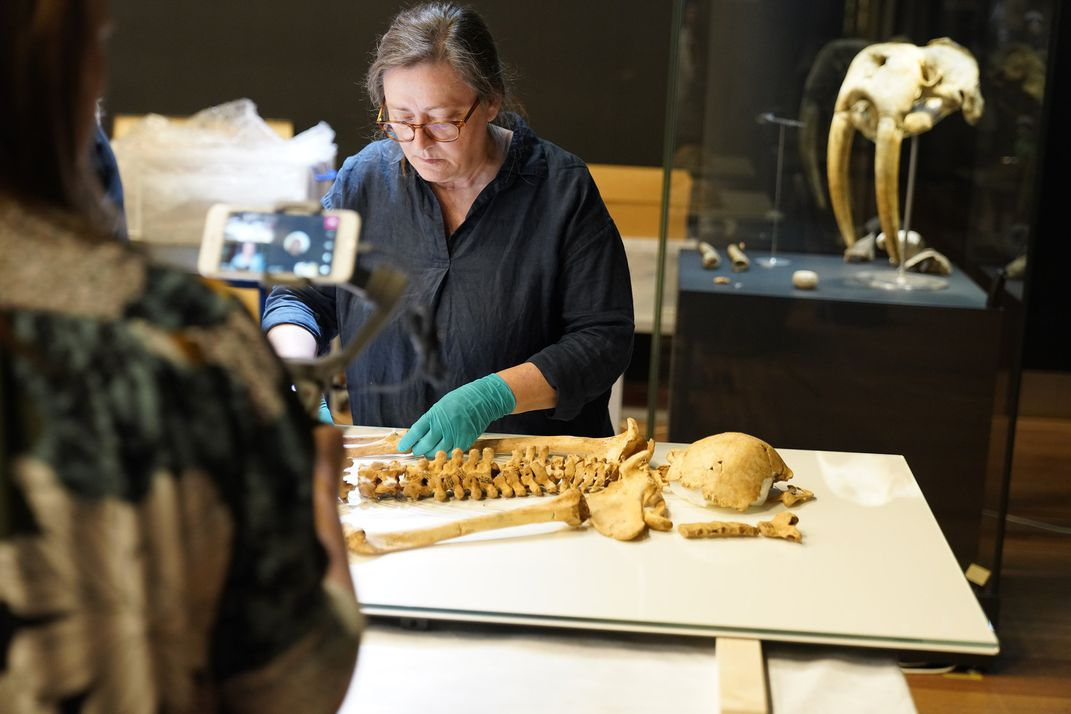 Museum worker with skeleton