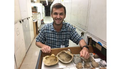 The National Museum of Natural History's newest curator in the paleobiology department, Dr. Stewart Edie, opens a drawer with mollusk fossils in the museum's invertebrate paleobiology collection. (Katie Collins, National History Museum, London)