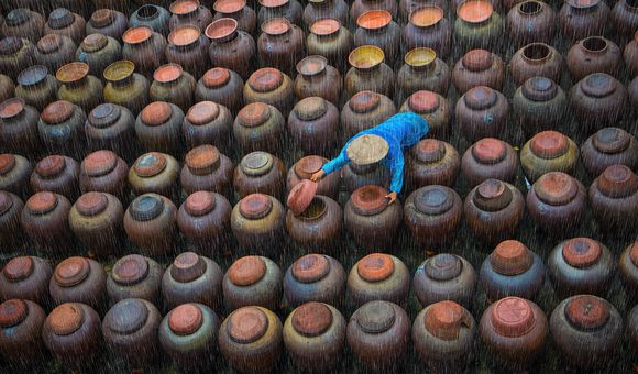 A worker closes the jar of Tương in the rain. Tương is a popular spice in Vietnamese cuisine, made up of mixed moldy rice and soybean water, then incubate in pottery jars for couple of days.