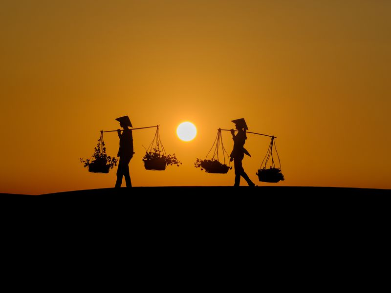 The two women carrying the flowers were walking in the sand dunes in Vietnam as the sun was setting.