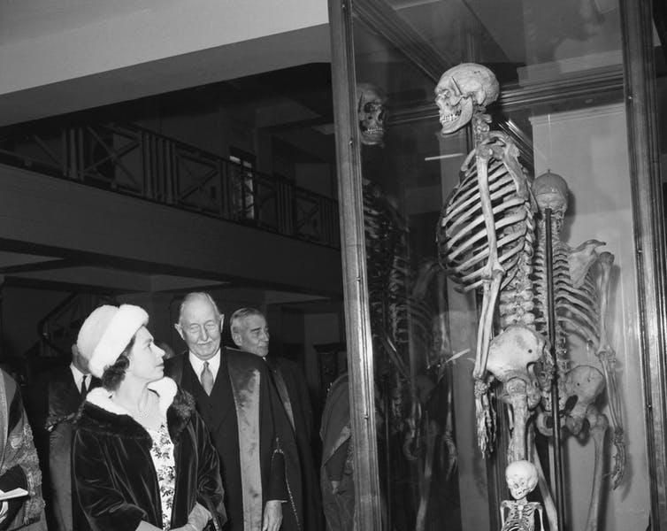 Why The Skeleton Of The Irish Giant Could Be Buried At Sea Smart