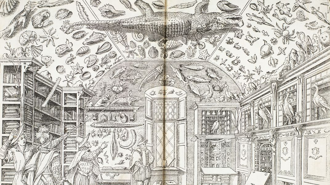 Black and white book illustration of room covered in natural history specimens, including crocodile on ceiling.