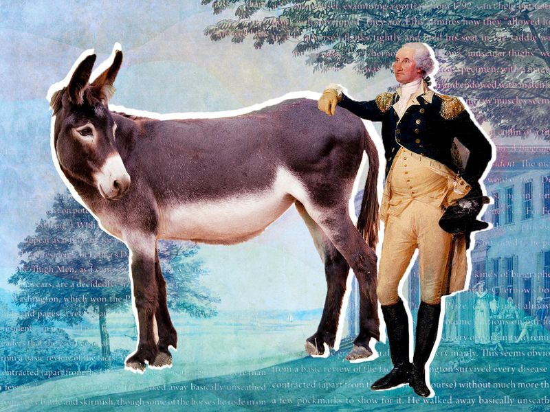 George Washington and a mule