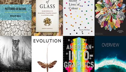 "The Best ""Art Meets Science"" Books of 2016"