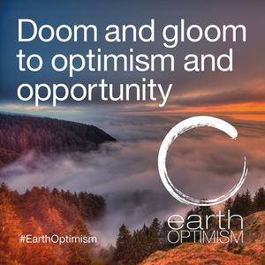 Doom and gloom to optimism and opportunity