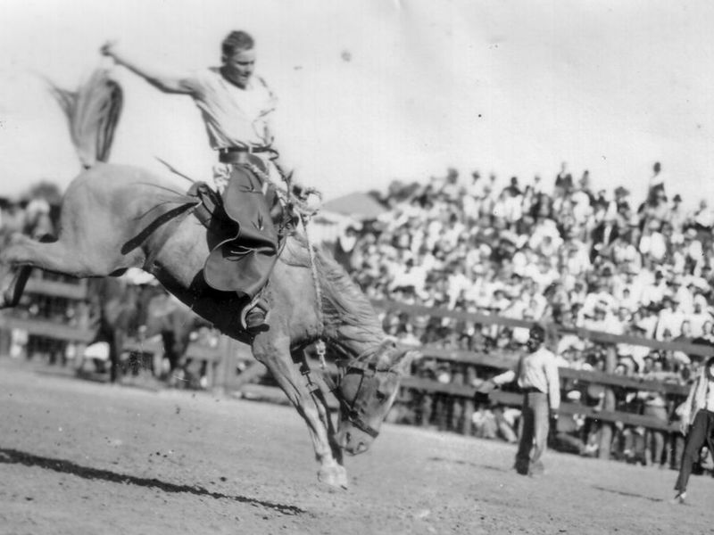 A convict hangs on to a bucking bronco c. 1940