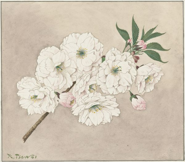 Ichiyō (Single leaf), 1921