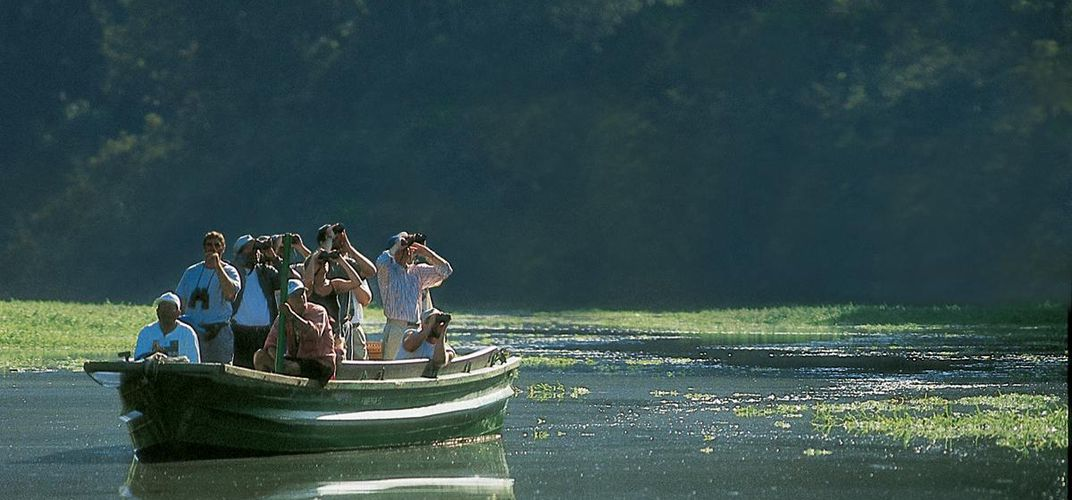 Boat excursions accompanied by expert naturalists allow a close-up look at wildlife