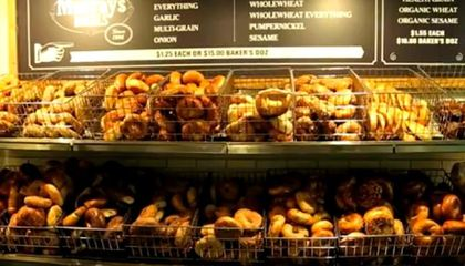How Chemistry Gives New York City Bagels an Edge