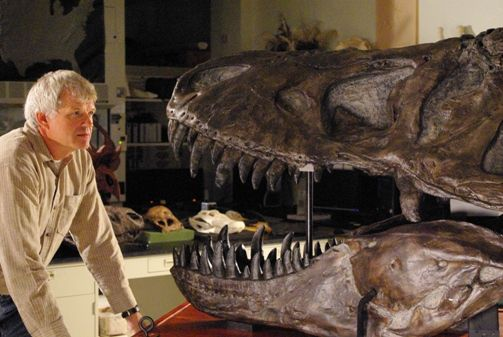 Paleontologist Philip Currie poses with a tyrannosaur skull.