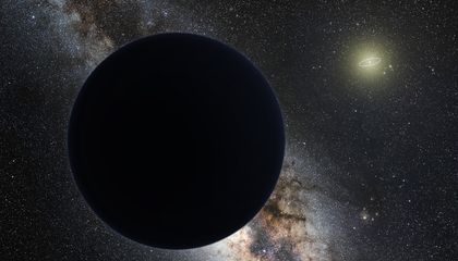 Planet 9 Might Be an Immigrant
