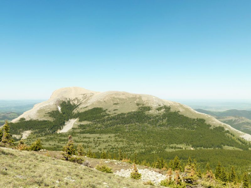 Pictured: Protected land near Crowsnest Pass, Alberta