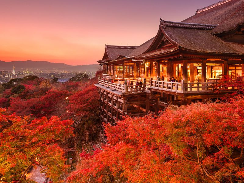 Forget Cherry Blossoms — Why Fall May Be the Best Time to Visit Japan