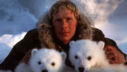 Interview With Indianapolis Prize Winner and Polar Bear Researcher Steven Amstrup