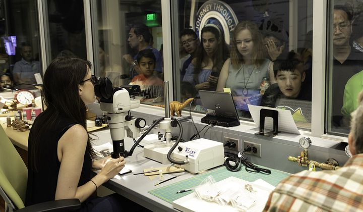 On opening day of the new fossil hall, visitors flocked to the windows of the FossiLab to see fossil preparation in action. (Kate D. Sherwood, Smithsonian Institution)