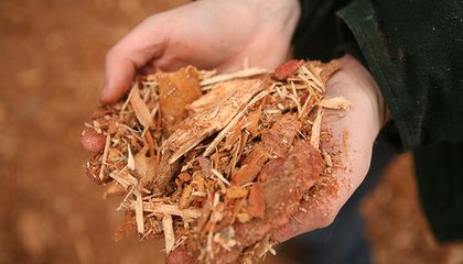 Could Wood Scraps Fuel Planes?