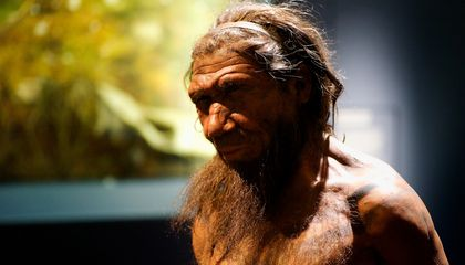 Neanderthals May Have Given Us Both Good Genes and Nasty Diseases