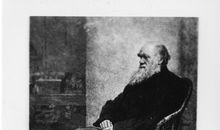 How Darwin's Theory of Evolution Evolved