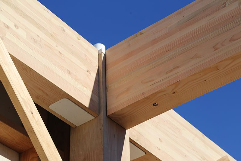 Will Skyscrapers Of The Future Be Built From Wood
