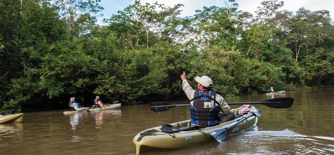 Kayak along the Amazon in order to discover its hidden gems