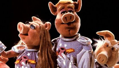 Pigs in Space and Other Bizarre Experiments