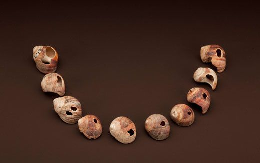 Exhibition Shell Necklace : The human family s earliest ancestors science smithsonian