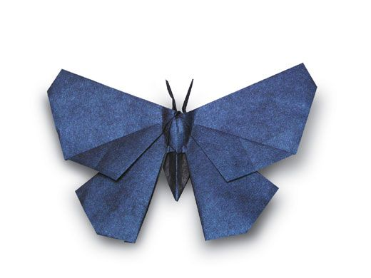 How to make an origami butterfly : video - CleverHumanity | 390x520
