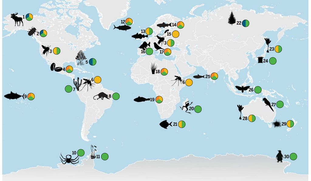 Known and anticipated changes in species distribution due to climate change around the world have implications for culture, society ecosystems, governance and climate change.