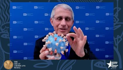 Anthony Fauci Donates His 3-D SARS-CoV-2 Model to the Smithsonian