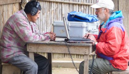 Researchers Travel to the Amazon to Find Out if Musical
