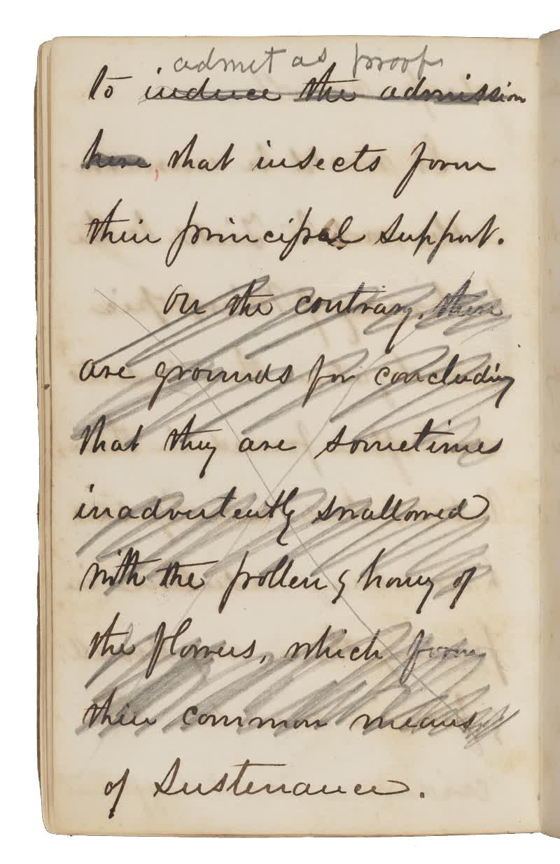Notebook page handwritten in cursive with black or dark brown ink, and pencil marks crossing out portions of the text.