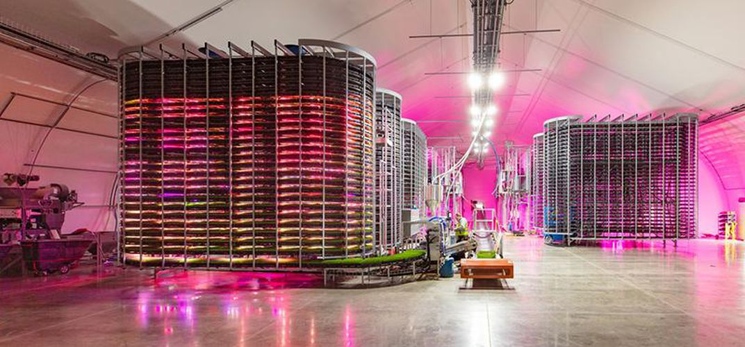 Caption: Could Indoor Vertical Farms Feed Livestock?