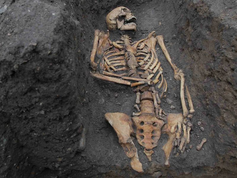 A skeleton surrounded by dark brown dirt and mud; the bones are arranged lying down with the head turned to one side, all yellowed