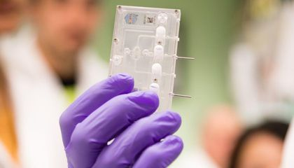 How Putting Organs on Chips Could Revolutionize Medicine