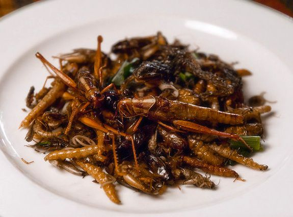 People in Israel Really Are Eating Swarming Locusts | Smart News