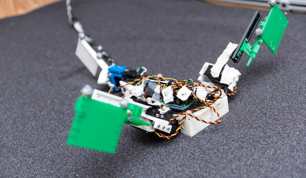 The robot has two limbs and a powerful tail, with motion provided by electric motors. (Rob Felt, Georgia Tech)