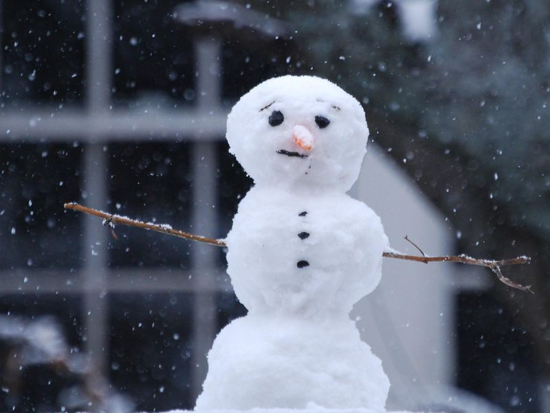 Do You Want To Build a Snowman? Physics Can Help | Science | Smithsonian