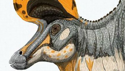 Intimate Secrets of Dinosaur Lives