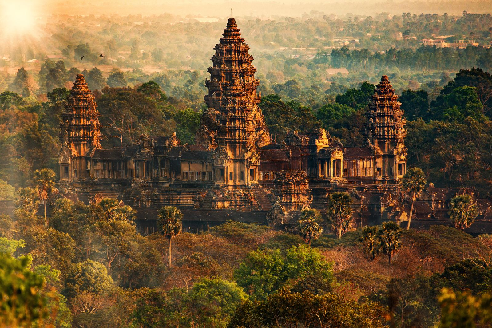 Angkor Wat May Owe Its Existence to an Engineering Catastrophe