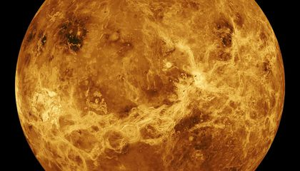 Lifeless Venus Could Hold the Key to Life on Earth