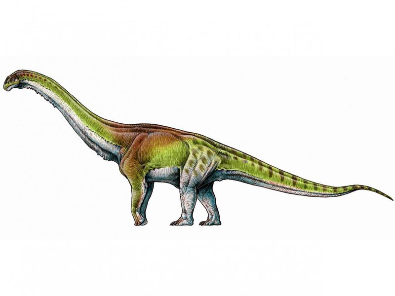 did scientists just unveil the biggest dinosaur of all time