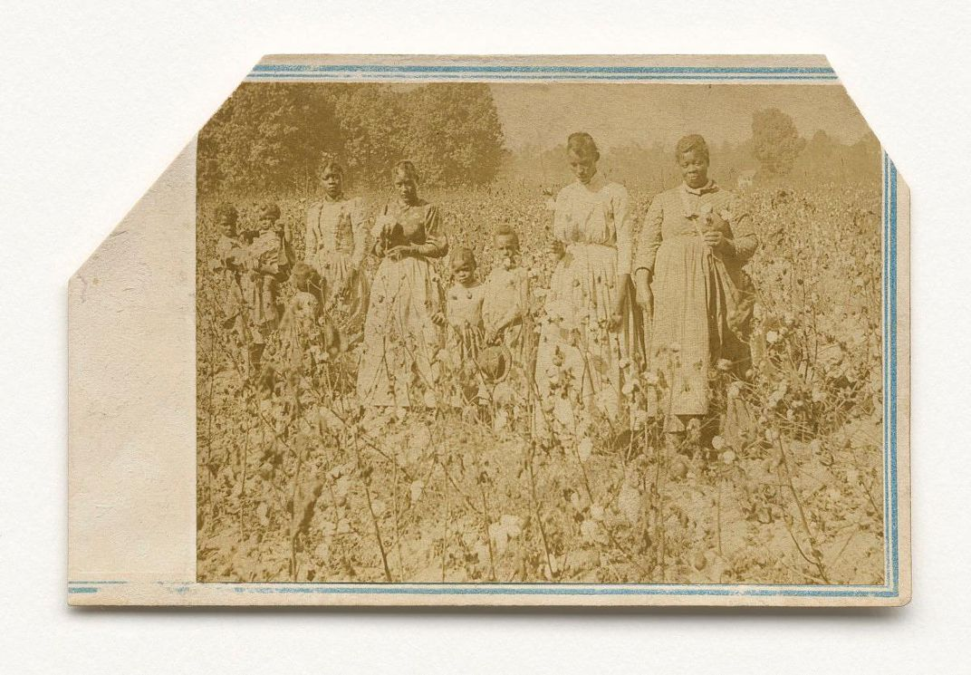 Women and children in a cotton field