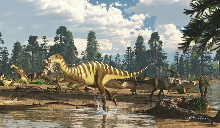 New Dinosaur in Australia Reveals a 'Lost World'