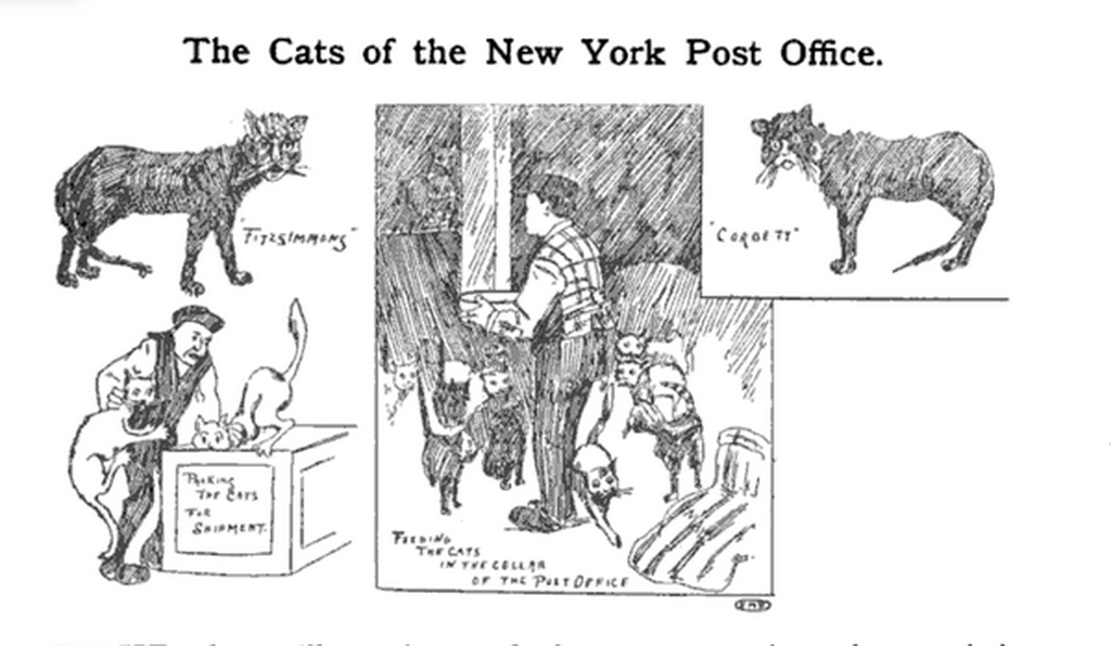 An artist's rendition of New York post office cats of the 1890s.