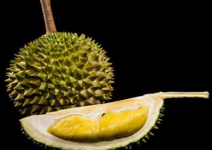 Caption: Sniffing Out the Genes Behind Durian's Stench