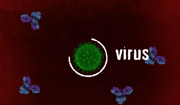 Preview thumbnail for video'Ask Smithsonian: How Do Vaccines Work?